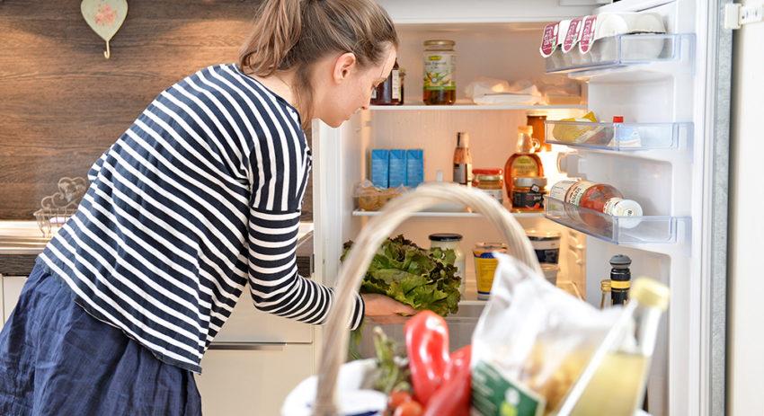 Kühlschrank Im Auto Lagern : Essen richtig lagern der nachhaltige warenkorb