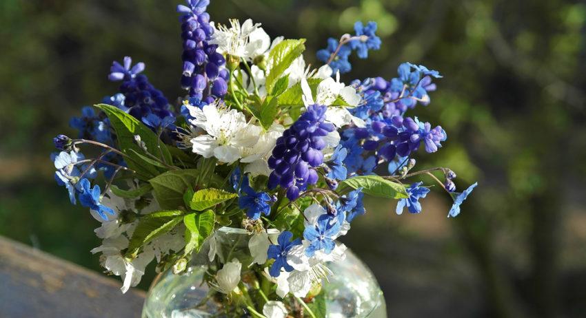 Klassiker zum Feiertag: Nachhaltige Blumensträuße | Der ...